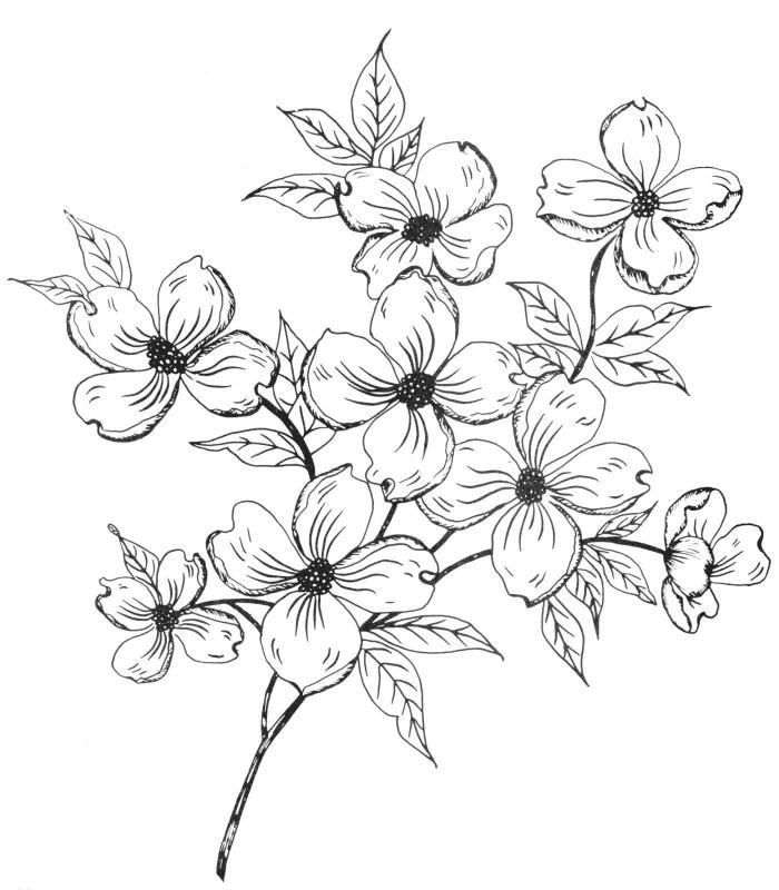 Noir et blanc dessin simplifié bouquet de fleurs dessin beau idée de dessin fleur noir et blanc