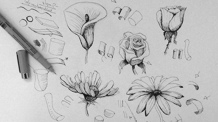 Esquisses de fleurs bouquet de fleurs dessin apprendre a dessiner facilement
