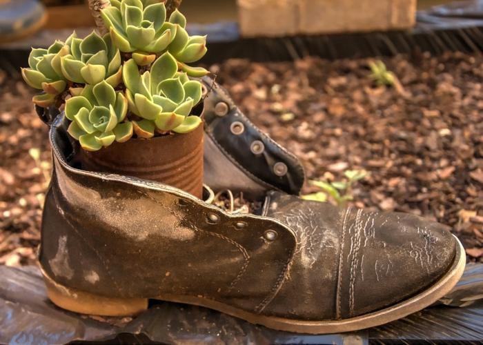 soulier en cuir avec succulentes plantées en pot de conserve, deco recup jardin avec objets simples