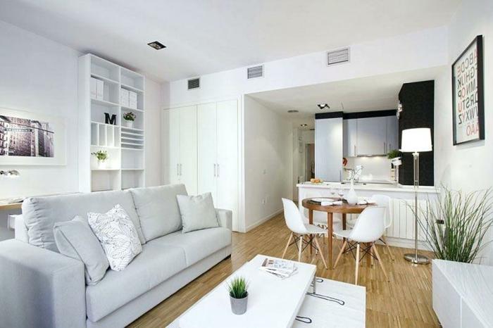 aménagement appartement moderne, sofa gris, table longue de salon, sol en bois, étagère blanche, kitchenette pour studio
