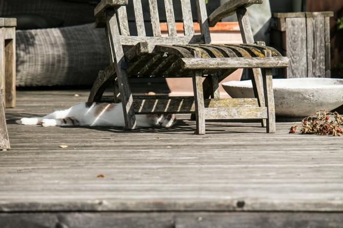 chaise en bois, chat qui se repose sur une terrasse en bois, vieil évier en pierre