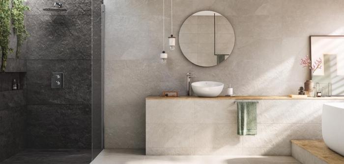 modèle de panneaux muraux pour salle de bain à effet pierre naturelle, cabine de douche en gris anthracite avec douche pluie et plante verte
