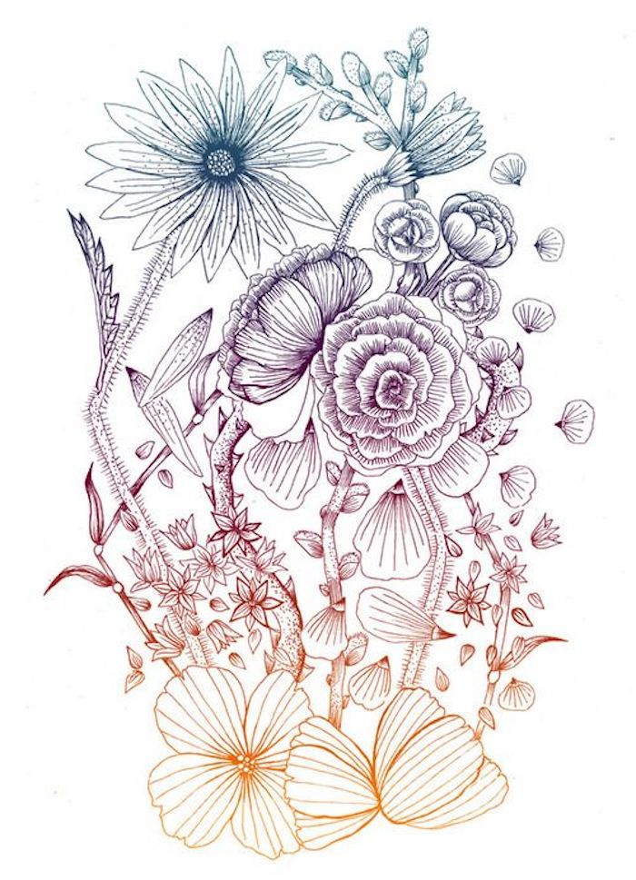 Ombré couleurs fleurs composition inspiration commencer a dessiner rose dessin etape par etape