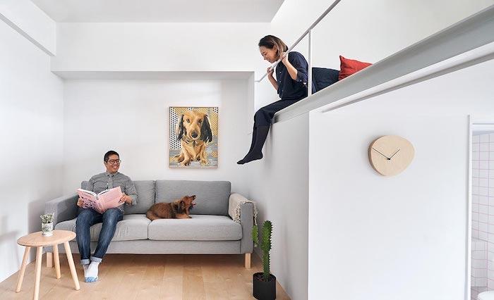architecture japonaise, deco studio épuré avec lit en hauteur, murs dépouillés avec un seul portait de chien, canapé gris et petite table ronde basse
