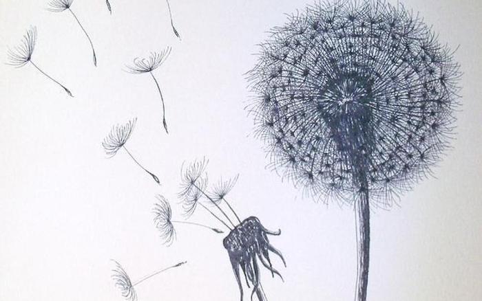 Pissenlit fleur dessin crayon noir, dessin etape par etape, dessin de rose belle couleurs naturelles