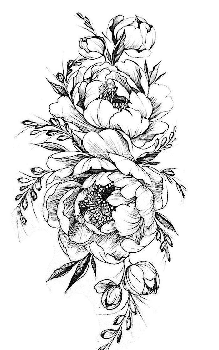 Pivoines bouquet dessin noir et blanc, dessin facile a faire etape par etape dessin facile a reproduire par etape