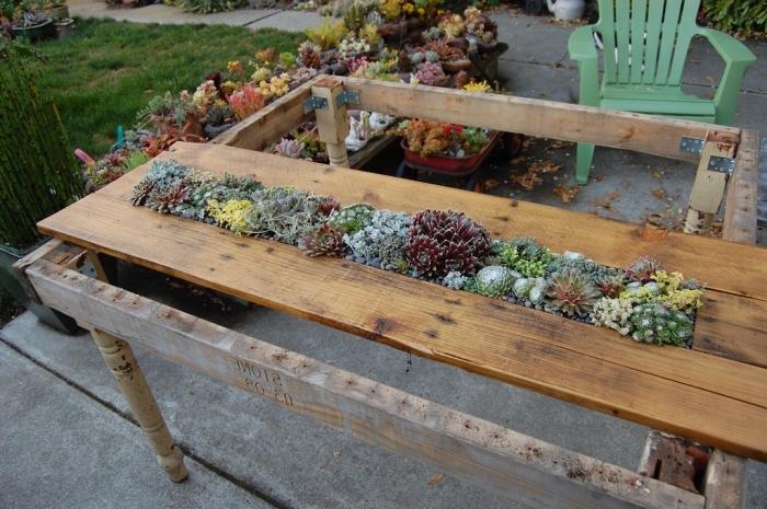 modèle de table de jardin DIY en bois avec rangement succulentes, exemple que faire avec des palettes, bricolage palette bois