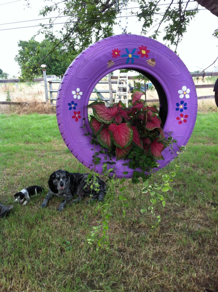 pneu lilas accroché à un arbre, utilisé comme pot suspendu, plantes, dessins de fleurs, chiens