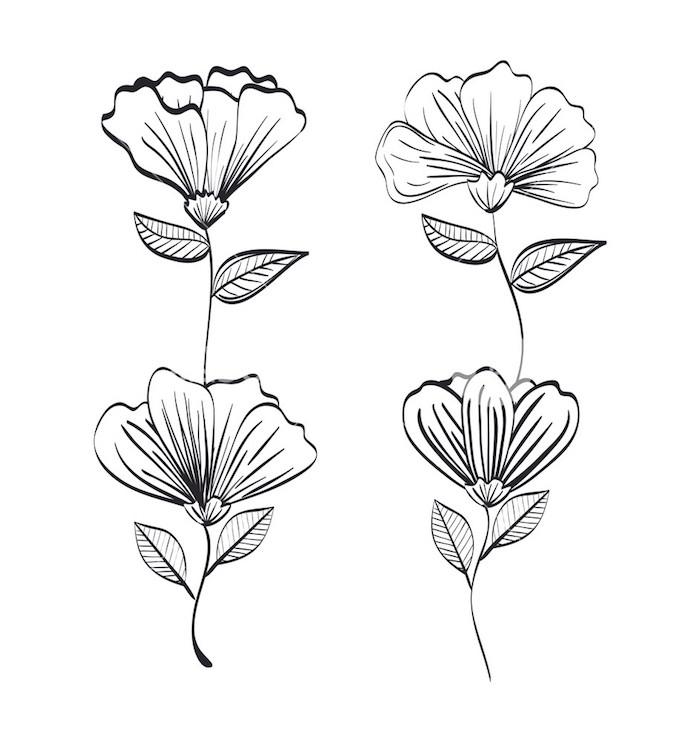 Simple fleur noir crayon papier blanche apprendre a dessiner facilement comment dessiner une fleur