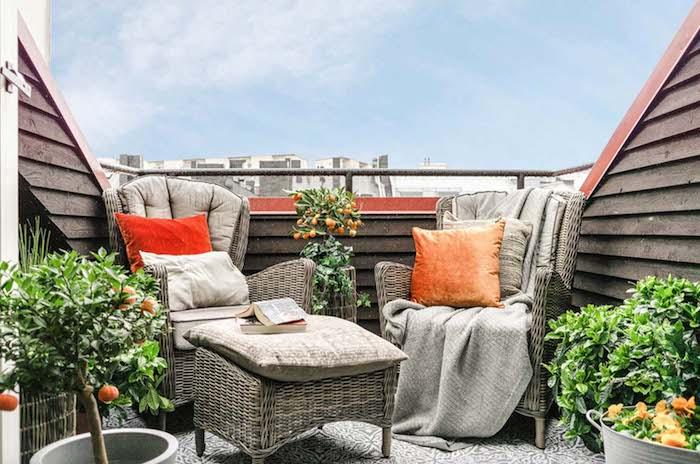 arbres orangers sur une terrasse avec des fauteuils et table tressés, plantes tropicales sur une terrasse, sol gris et blanc
