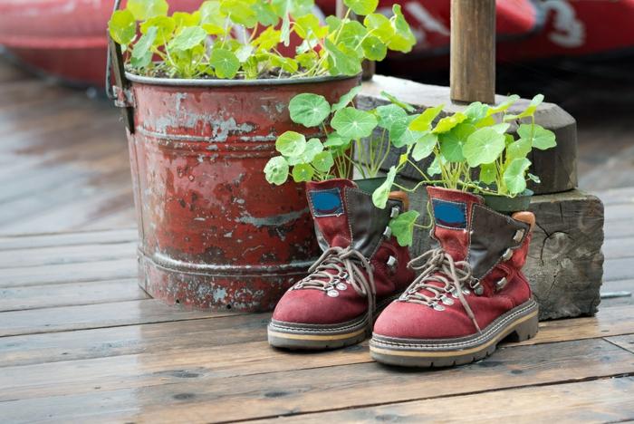 chaussures avec des fleurs plantées, sol en planches, vieux sceau métallique avec cultures plantées