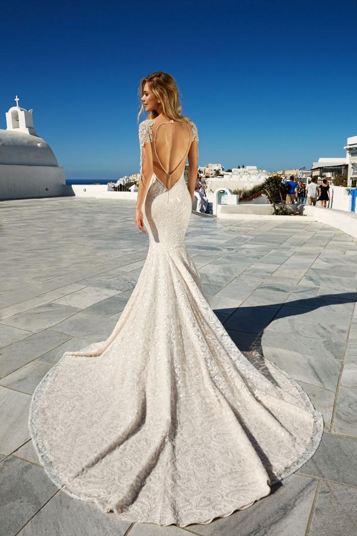 Dos nu, dentelle manches et buste, la plus belle robe de mariee princesse, quelle robe pour mon mariage, longue traine