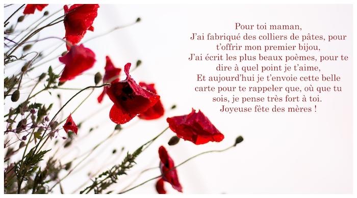 Photo avec texte pour la fete des mere, bonne fete maman poème, fleurs pour la fete pavot rouge en fond blanc