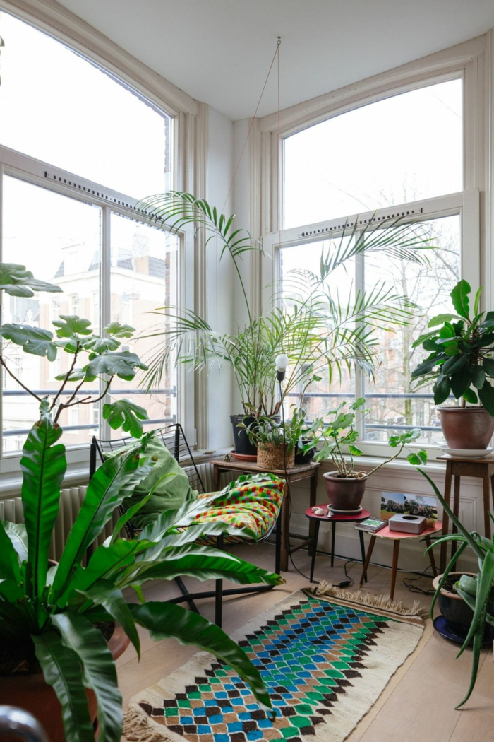 équipement de véranda avec plusieurs plantes vertes, coussins et tapis style ethno chic