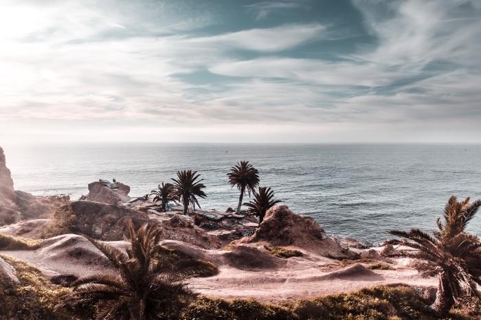 quel fond ecran ete choisir pour son pc, exemple de photo magnifique avec paysage au bord de la mer et palmiers