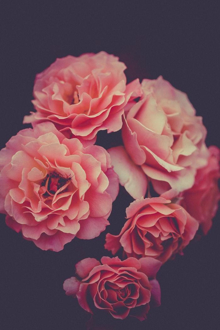 Fleurs de printemps à fond noir, photographie fleurie roses de beauté, image fête des mères, envoyer message à maman