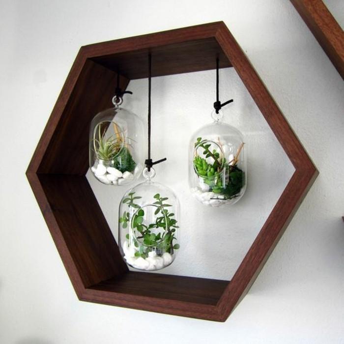 terrariums en petits bocaux, cage cire d'abeille en bois, mur gris pâle, decor mural créatif