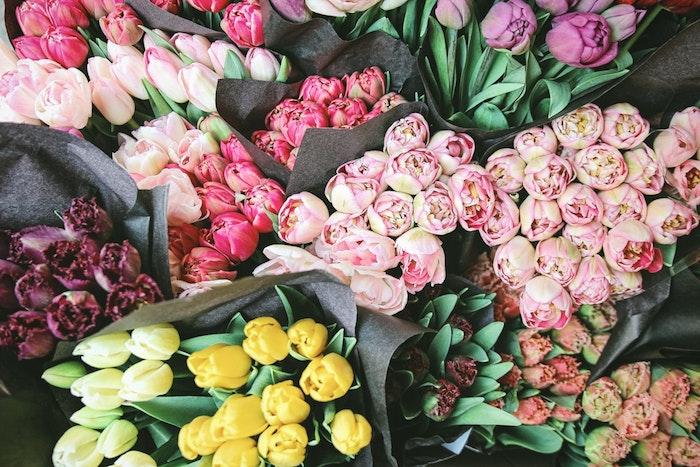 Bouquet de tulipes image bonne fete maman, bonne fete des meres, carte fete des meres, fleurs jolies