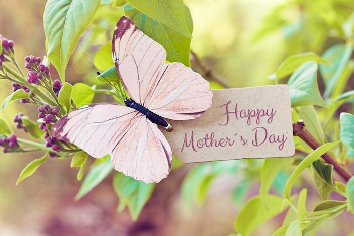 Papillon qui dit bonne fête, branche fleurie, image de printemps, envoyer message à maman, bonne fête des mères, image fete mere