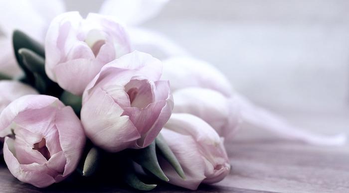 Belle photo de tulipes bouquet, image fête des mères, cadeau fete des meres, les plus belles photos, tulipes roses