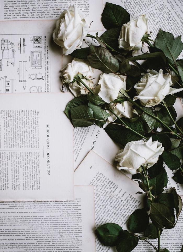 Roses blanches sur papier avec interessantes textes envoyer une image bonne fete maman, carte cadeau fete des meres