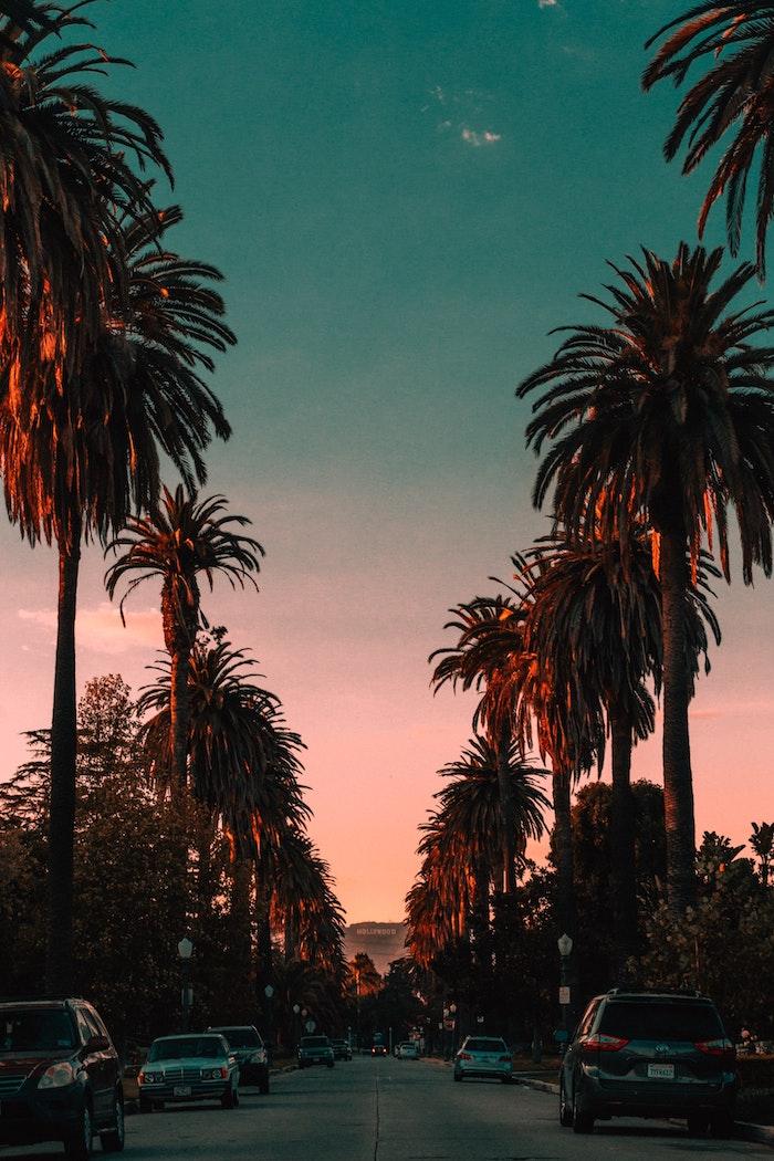 Los Angeles va éliminer les voitures à essence en 2030, photographie au coucher de soleil LA, Hollywood signe, rue avec voitures garés et palmiers