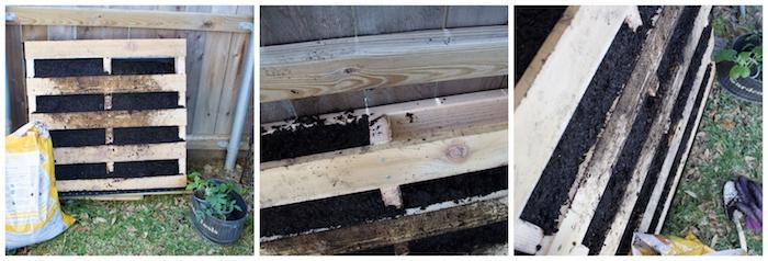 idée comment faire un potager en palette vertical dans le jardin, tasser le terreau dans les interstices de la palette