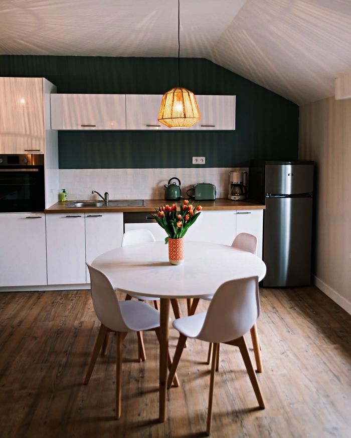cuisine blanche de style scandinave, meuble cuisine blanc mis en relief par le mur vert foncé et le plan de travail bois