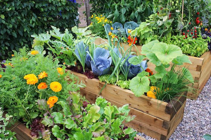 bac à fleurs et bac potager en bois recyclé, idée comment cultiver des légumes dans son jardin