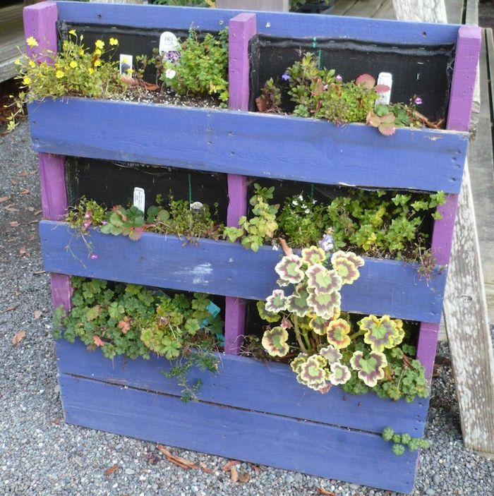jardiniere en palette repeinte en violet et bleu foncé, idée comment fabriquer un rangement pour plantes
