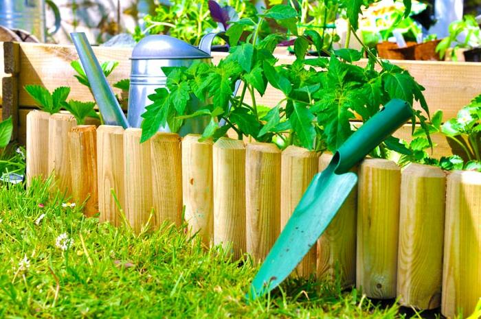 bordures de jardin bois, herbe fraîche, bordures pour parterres de légumes, mini palissade jardin