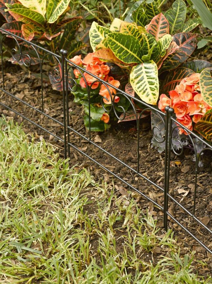 bordure jardin fer forgé, plantes fleuries oranges, séparation du parterre de l'herbe avec bordure originale
