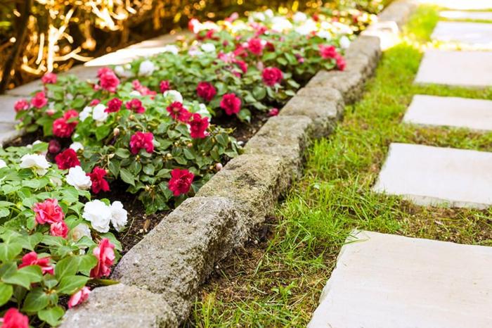 bordure de pierres, allée de jardin en dalles, petites fleurs épanouies, aménagement extérieur