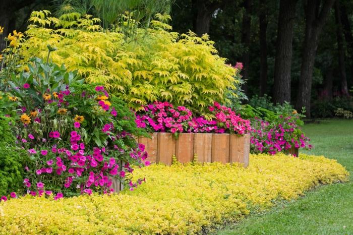 bordure haut, fleurs cyclamen, haies, parterre de différentes cultures, pelouse verte, jardin près d un bois