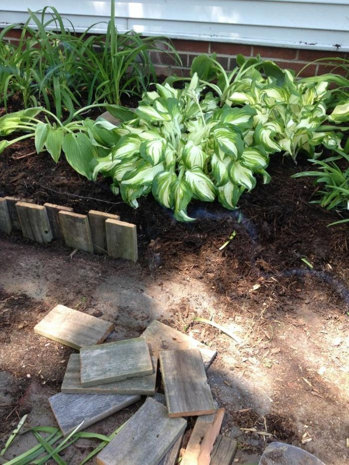 bordure bois, création de parterre de jardin, plantes vertes, petites découpes de planches fixées verticalement