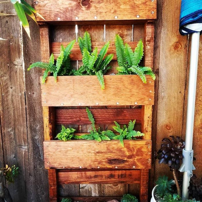 idee d habillage mur vegetal exterieur avec des plantes vertes plantées en bac et accrochés sur une palissade