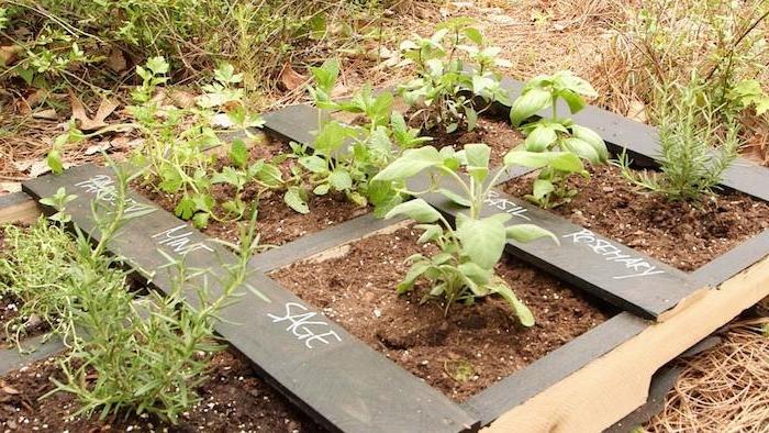 carre potager en vois horizontal avec des compartiments pour cultiver des herbes fraiches dans son jardin