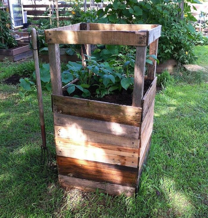 potager vertical, bac à fleurs énorme réalisé avec les planches d une palette de bois, légumes vertes