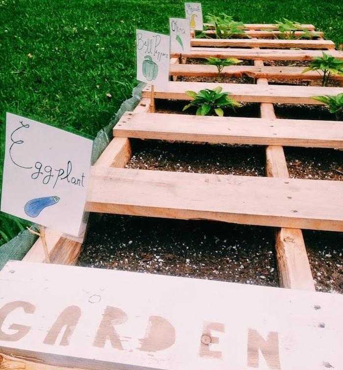 palette de bois avec des légumes organisés dans compartiments variés et plantés dans terreau, comment fabriquer carré potager simple