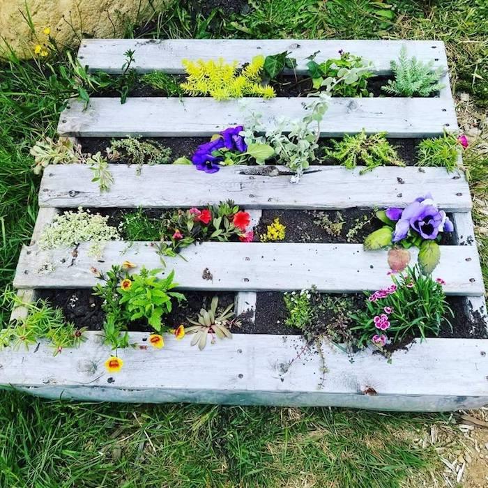 planter des fleurs sur l horziontal, idee de jardinière palette avec des fleurs plantées en terreau sur le sol