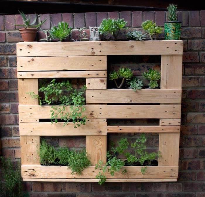 exemple d habillage mur exterieur avec des vegetaux rangés sur une palette, idee deco plantes grasses, herbes fraiches et autres plantes