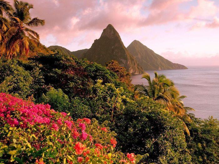 Saint Lucia Caraïbes, fleurs et montagnes au bord de la mer Caribbean
