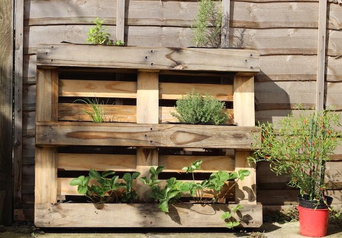 herbes fraichес et fraises plantées dans les interstices d une palette, idee amenagement exterieur maison