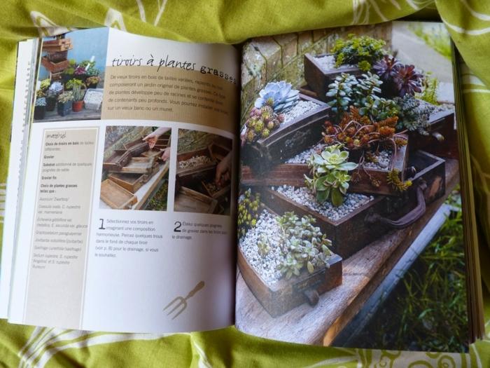 idée déco de jardin avec plantes succulentes, cactus plantés dans des valises vintages