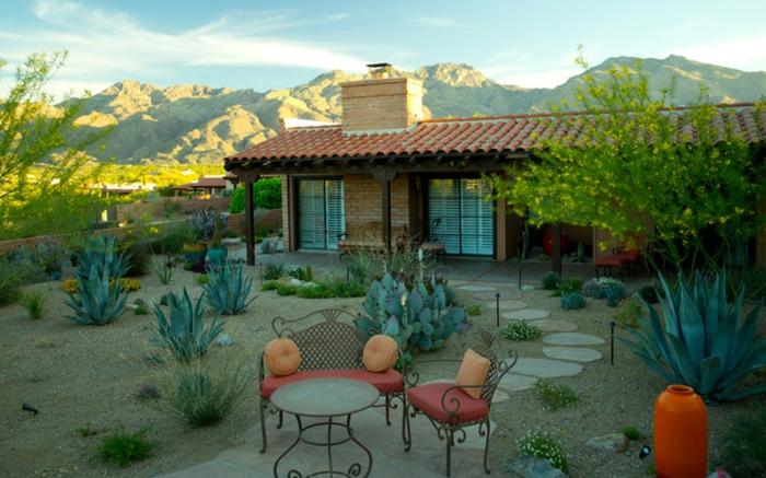 design de jardin de cactus, grands cactus exterieur, comment planter des plantes grasses