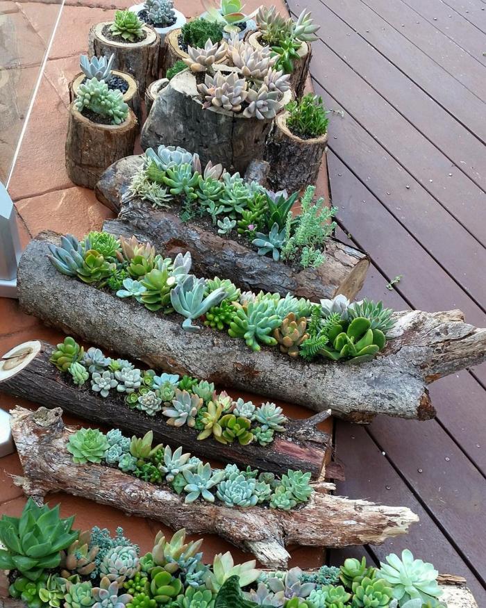cactus plantés dans jardinières en bois flotté, plantes succulentes extérieur pour terrasse
