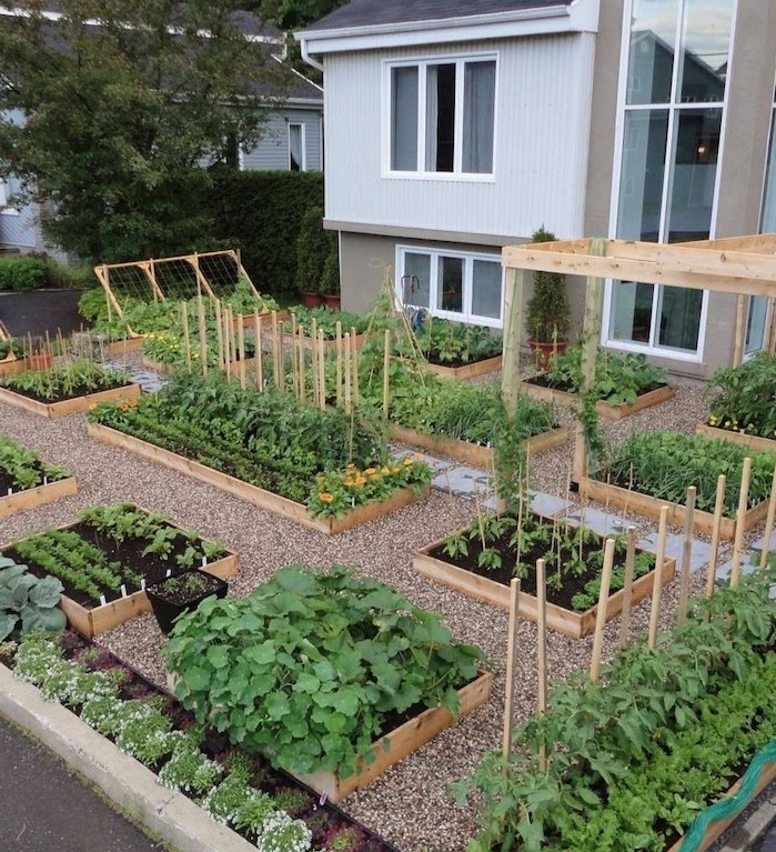demonter une palette pour réaliser un carré potager, idée carre potager en bois plusieurs exemples, amenagement jardin potager