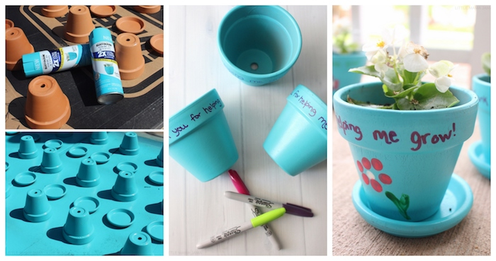 idee de pot de terre cuite repeint en bleu avec message merci de , avoir aidé à grandir et fleur plantée à l intérieur