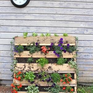 Fabriquer une jardinière ou potager en palette - une solution DIY pour décorer ou pour consommer bio
