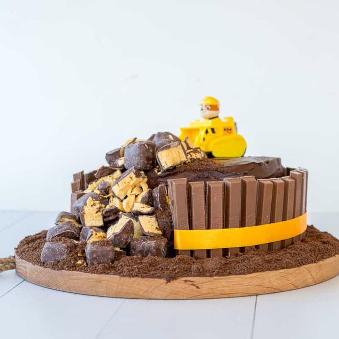 gateau anniversaire au chocolat, chiens favoris des enfants, petit gateau fait maison